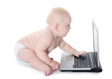 The little baby with the laptop Stock Images
