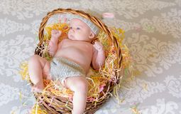 Little baby laying in Easter basket with bunny outfit Royalty Free Stock Photo