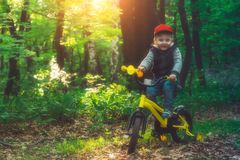 Little baby is learning to ride a bicycle in the forest. royalty free stock photo