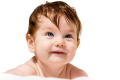 Little baby look out and creeps Stock Image