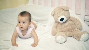 A little girl lying next to a bear on a white blanket stock video footage