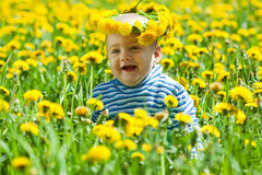 Little baby in  meadow Royalty Free Stock Photo