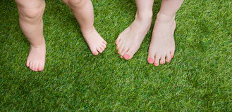 Little baby and mother legs standing  on grass Stock Image