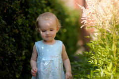 Little baby in an overgrown grass. Little baby wearing nice blue dress in an overgrown grass looking thoughtful Royalty Free Stock Photos