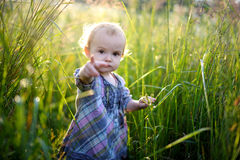 Little baby in an overgrown grass pointing at you. Little baby girl in an overgrown grass pointing with her finger at you Royalty Free Stock Photography