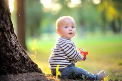 Little baby at the park Stock Image
