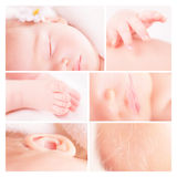 Little baby photo collage Stock Photography
