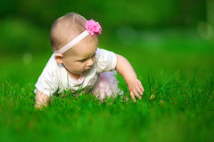 A little baby in the pink dress crawls on a grass. Portrait of a little baby in the pink dress crawls on a green grass Stock Images