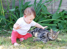 Little baby playing with cat in the garden Stock Photography
