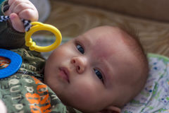 Little baby plays with toy Stock Photo