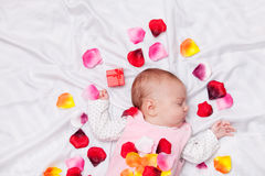 Little baby with rose petals Royalty Free Stock Photo