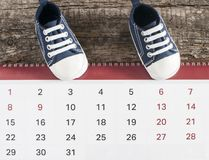 Little baby shoes with calendar. Calendar with baby booties on wooden background Stock Photo
