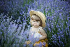 Free Little Baby Sit In Lavender Field With Hat Royalty Free Stock Photo - 191044405