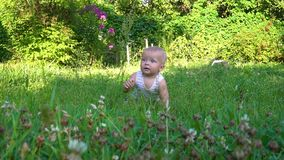 Little baby is sitting in grass and crawling. Hd stock video footage