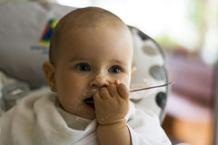 Little baby with a spoon Royalty Free Stock Image