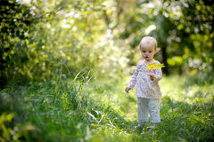 Little baby in a summer forest Stock Photo