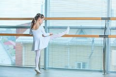 Little ballerina girl in a pink tutu. Adorable child dancing classical ballet in a white studio. Children dance. Kids royalty free stock photo