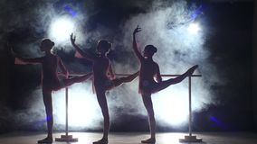 Little ballet girls in  pointe shoes posing at stock video footage