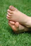 Little bare feet. Two little white healthy feet of a caucasian child resting barefeet in the grass of a tidy lawn in the sunshine outdoors during summertime Royalty Free Stock Photography