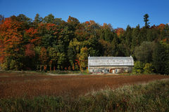 Little barn during fall season Stock Photo