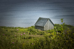 Little barn in a field Royalty Free Stock Photo