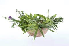 Little Basket of aromatic herbs Stock Photo