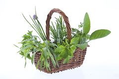 Little Basket of aromatic herbs Royalty Free Stock Image