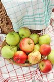 Little basket full of green and red garden apples Royalty Free Stock Photos