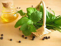 Little basket with herbs Stock Images