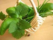 Little basket with herbs Stock Photos