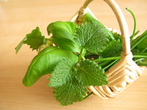 Little basket with herbs Stock Photo