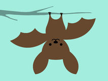 Little bat hanging upside down. Cute simple little caricature cartoon bat hanging upside down from a tree branch against a blue background suitable for kiddies Stock Image