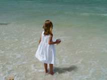 Little Beachcomber 2 royalty free stock photo