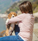 Little beagle puppy with woman Stock Images