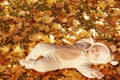 Little bear. Cute baby dressed in fancy dress like little bear, sleeping on yellow autumn leaves Stock Images