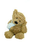 Little Bear with Bandage. Royalty Free Stock Images