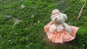 Little bear doll in orange evening dress in green moss carpet Royalty Free Stock Image