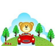 Little bear driving a car Stock Photos