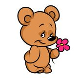 Little Bear Flower cartoon illustration Royalty Free Stock Photography