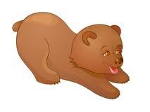 Little Bear plays Stock Photos