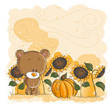 Little bear and pumpkin - Halloween or thanksgivin Royalty Free Stock Image
