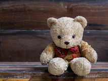 Little bear Royalty Free Stock Photo