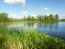 Little Bearskin Lake Wisconsin Royalty Free Stock Photos
