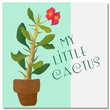 Little beatiful cactus tree in pot Royalty Free Stock Images