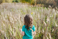 Little beautiful brunette girl in a field with. Beautiful autumn landscape in the countryside. Long-haired girl Royalty Free Stock Image
