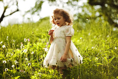 Little beautiful curly girl with dandelion Royalty Free Stock Images