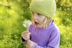 Little beautiful girl. Little beautiful girl blows on a dandelion in the summer royalty free stock photos