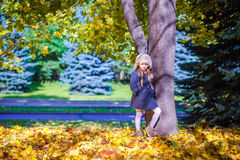 Little beautiful girl on the autumn meadow near Stock Photography