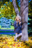 Little beautiful girl on the autumn meadow in a Stock Photography