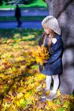 Little beautiful girl on the autumn meadow in a Royalty Free Stock Photos